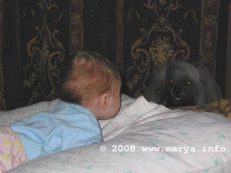 это я и пес Филип